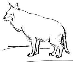 Brown hyena outline