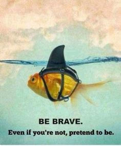 Always Be Brave  #quote #lifequote http://ncnskincare.com/