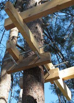 :::Les cabane perchées: les plateformes, constructions et mises en gardes. Building A Treehouse, Treehouse Kids, Tree House Plans, Diy Tree House, Cozy Backyard, Cool Tree Houses, Tree House Designs, Tree Tops, Outdoor Projects