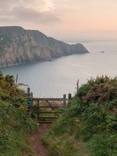 The beautiful Pembrokeshire coastline in Wales (UK). If you've never been, it's probably about time you did…