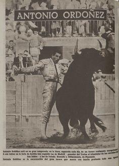 @CelestinoMigue #RevistaElRuedo. 1958. Antonio Ordóñez sortea la embestida poderosa del toro.