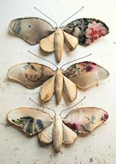 ❥ moths~ muted, antiquey, floral fabric