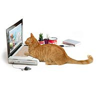 LAPTOP CAT SCRATCHING PAD|UncommonGoods