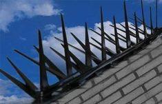 Security Door, Security Fencing, Patio, Backyard, Concrete Fence, Walkway, Wind Turbine, Home Remodeling, House Plans
