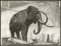 "#22 William Kentridge - Drawing From ""Zeno Writing"" 2002 - The mammoth takes up the majority of this photo. I really like elephant/mammoth-type animals and this one has great detail in its coat and tusks."
