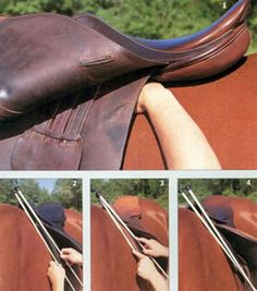 Check for Back Pain and Saddle Fit | Expert how-to for English Riders