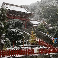 The Japanese capital of Tokyo has been hit by its first November snow in 54 years, slowing rush hour trains as residents slogged to work wearing heavy coats and boots in a city far more accustomed to earthquakes than to snow. The last time snow fell in November in Tokyo was in 1962, when John F. Kennedy was President of the United States and singer Bob Dylan had released his debut album just months before. This stunning shot features the Tsurugaoka Hachimangu Shrine in Kamakura, near Tokyo…
