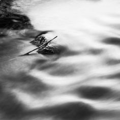 500px / River study 3 by Robert Manuszewski