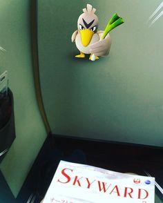 JL121(JAL121) F-class HND -> ITM in 201607 #travel #flight #jal #osaka #japan