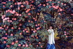 Audrey Marnay in Harper's Bazaar UK October 2015 by Erik Madigan Heck 11