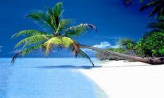 marco island, florida