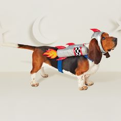 Give your dog some flashy Halloween style with this silver Dog Costume from Hyde and Eek! This rocket dog costume features blue straps around Pet Halloween Costumes, Halloween Fashion, Pet Costumes, Baby Halloween, Halloween Ideas, Costume Ideas, Space Costumes, Dog Spaces, Rocket Dogs