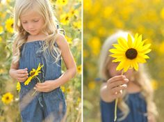 Rebekah Westover Photography: Sunflowers