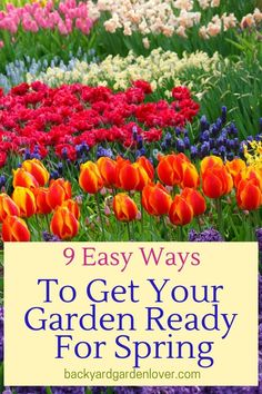 Want a head start on your garden next season? Here are 9 easy ways to get your garden ready for spring. #spring #garden #springgarden #flowers #vegetables #backyardgarden #mygarden #bgl #prettyflowers #gardeningtips