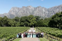 25 Best Molenvliet Cape Town Images Cape Town Wedding Locations
