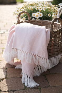 Basket & Blanket