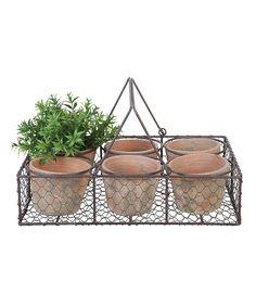 Another great find on #zulily! Seven-Piece Terra Cotta Planter Set by Esschert Design #zulilyfinds