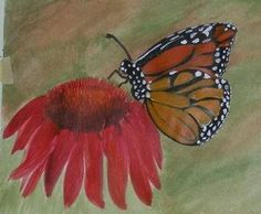 Acrylic painting of Monarch Butterfly on canvas paper.