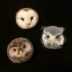 Pompom owlies!!!!