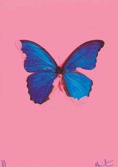 DAMIEN HIRST (b. 1965) | Blue Butterfly from: In the darkest hour there may be light | 2000s, Prints & Multiples | Christie's