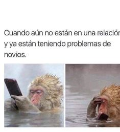 Mexican Humor, Funny Memes, Jokes, Spanish Memes, Relationship Memes, Smile, Truths, Funny Texts, Funny Humor Quotes