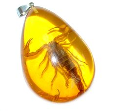 $42.50 Large+Copal+with+genuine+Scorpio+Inclusion+Sterling+Silver+Pendant at www.SilverRushStyle.com #pendant #handmade #jewelry #silver #copal