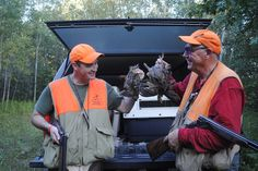 An upland hunt in the Mitten.