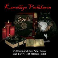 Cinnamon Money Spell {Printable Spell Page} – Witches Of The Craft® Spiritual Healer, Spiritual Awakening, Spirituality, Spiritual Path, Magick, Witchcraft, Wiccan, Revenge Spells, Black Magic Spells