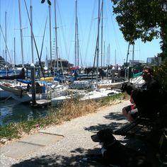 Great travel spots for glamping on pinterest 39 pins for Santa cruz fishing spots