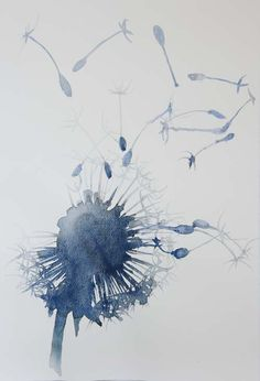 Plumes & Feathers - artpropelled:      Maria Elena Borsato