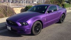Black And Purple Mustang <3