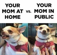 Mom at home vs mom in public