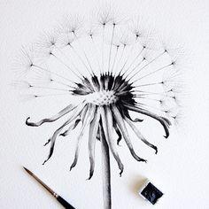 ➖▪️#dandelion #painting #watercolour
