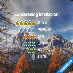 Exhilarating Inhalation — Essential Oil Diffuser Blend