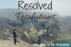 Resolved Resolutions - http://www.littleblogonthehomestead.com/resolutions/