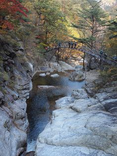 and Odaesan National Park, South Korea