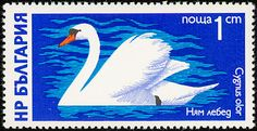 Mute Swan stamps - mainly images - gallery format