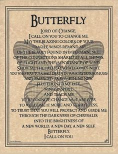 BUTTERFLY Prayer Shaman Animal Spirit Guide Native American Celtic Wicca Pagan    Collectibles, Religion & Spirituality, Wicca & Paganism   eBay!