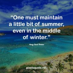 Summer is coming, with all the fun, love and inspirations. Let's celebrate this period of time with some happy and energetic summer quotes. End Of Summer Quotes, Happy Summer Quotes, Happy Quotes, Me Quotes, Summer Is Coming, Summer Of Love, Simple Qoutes, Summer Humor, Most Beautiful Words