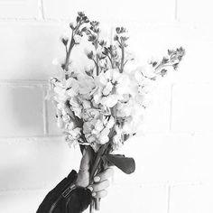 no rain no flowers My Flower, Wild Flowers, Beautiful Flowers, Colorful Flowers, Beautiful Dresses, Plants Are Friends, No Rain, Mother Nature, Planting Flowers