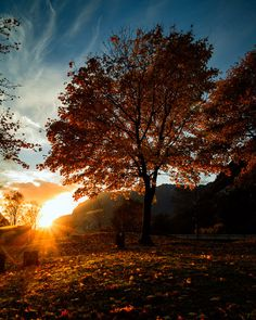 Sunset at Ørsdalen, Rogaland, Norway Moon Setting, Dawn And Dusk, Gods Glory, Castle In The Sky, Naturally Beautiful, Autumn Trees, Natural World, Vacation Trips, Places To See