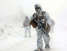 Marines conduct a patrol during the final comprehensive bilateral force-on-force training evolution March during Exercise Forest Light at the Hokkaido-Dai Maneuver Area, Hokkaido, Japan Us Marines, Royal Marines, Special Ops, Special Forces, Once A Marine, Navy Marine, Forest Light, Us Marine Corps, Military Life