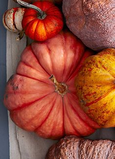 This classic heirloom was mentioned by famous French seed house Vilmorin as the most popular pumpkin in Parisian markets of the Pumpkin Vegetable, Pumpkin Squash, Pumpkin Garden, White Pumpkins, Fall Pumpkins, Pumpkin World, Types Of Pumpkins, Pumpkin Varieties, French Soup