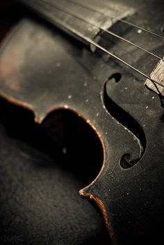 How could an ex-Delta Force guy who felt more comfortable living among Afghan tribesmen, hunting down terrorists and disarming bombs have a violin he claimed to know how to play? Was that even possible?