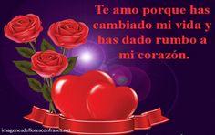Frases de amor con rosas rojas