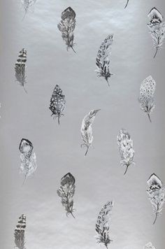 Feathers | Wallpaper from the 70s