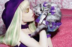 Catstory by Miles Aldridge