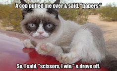 Grumpy Cat - Rock Paper Scissors...