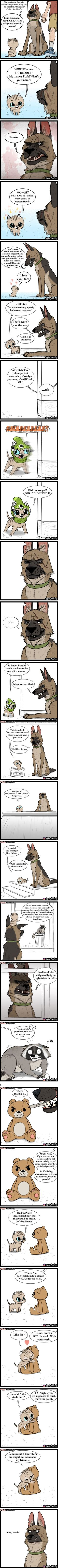 Pixie and Brutus >> someone make a comic series pleasseee Funny Cute, The Funny, Hilarious, Animal Memes, Funny Animals, Cute Animals, Cute Comics, Funny Comics, Image Hilarante