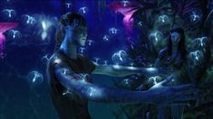 The Best Cinematography – The Many Looks Of Avatar | Student Resources